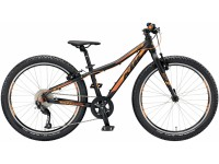Dětské kolo KTM Wild SPEED 24.9 2019